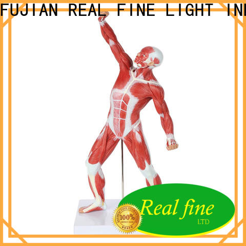 simple Home decor figurine online for office