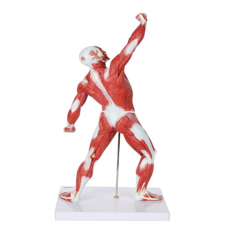 Miniature small human body figure resin product statue